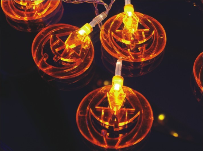 manufactured in China  FY-009-A208 LED LIGHT CHAIN WITH PUMPKIN DECORATION  company